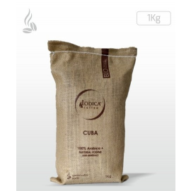 Coffee zrnková Iodica SOLCA 1kg