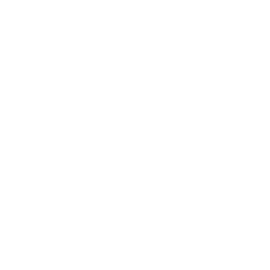 Deostick Divoká růže Deoguard 75g
