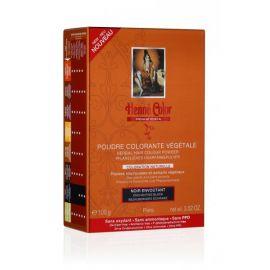 Barva Černá Premium Végétal Henné Color 100g