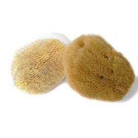 Přírodní mořská houba -Karibská  (9-11cm)